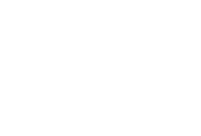 from Japan ti the World